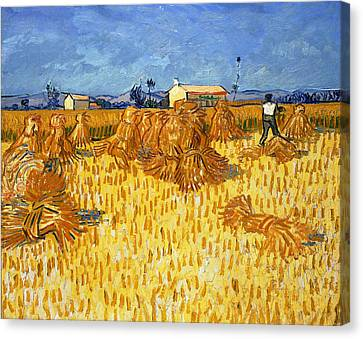 Harvest In Provence, June 1888 Canvas Print