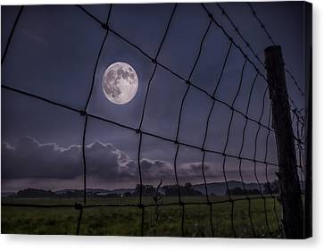 Canvas Print featuring the photograph Harvest Moon by Jaki Miller