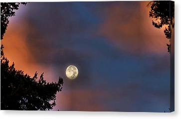 Canvas Print featuring the photograph Harvest Moon by Julia Hassett