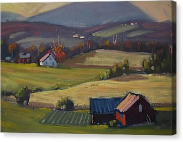 Harvest Patterns Canvas Print by Len Stomski