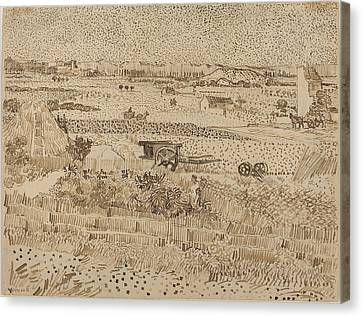 Harvest  The Plain Of La Crau Canvas Print