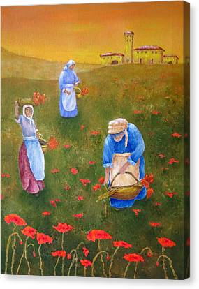 Harvesting Poppies In Tuscany Canvas Print by Pamela Allegretto