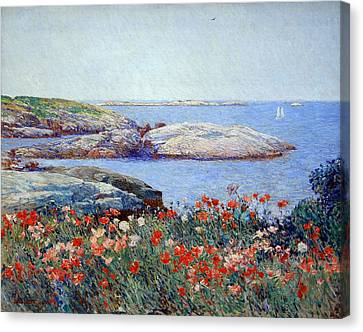 Hassam's Poppies On The Isles Of Shoals Canvas Print by Cora Wandel
