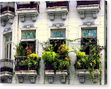 Ironwork Canvas Print - Havana Windows by Karen Wiles