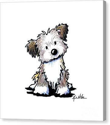 Havanese Puppy Canvas Print