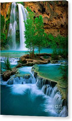 Grand Canyon National Park Canvas Print - Havasu Canyon by Inge Johnsson