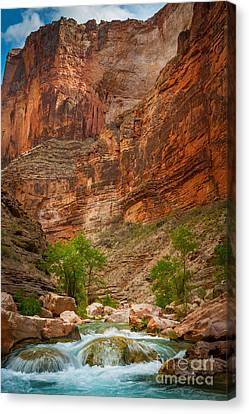 Sculpted Canvas Print - Havasu Creek Number 3 by Inge Johnsson