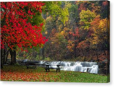 Have A Seat Canvas Print by Mark Papke