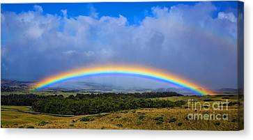 Hawaii The Rainbow State Canvas Print by Edward Fielding