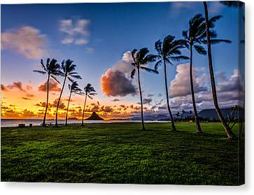 Canvas Print featuring the pyrography Chainaman Hat Hawaii by RC Pics