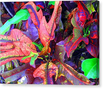 Hawaiian Foliage Canvas Print by Jean Hall