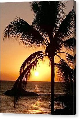 Hawaiian Palm At Sunset 2 Canvas Print