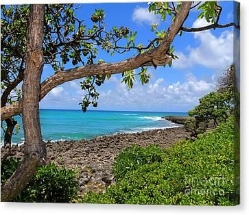 Canvas Print featuring the photograph Hawaiian Paradise by Kristine Merc