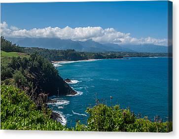 Hawaiian Paradise Canvas Print