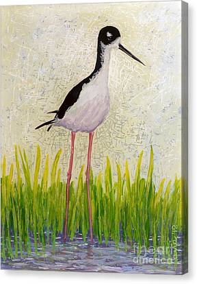 Hawaiian Stilt Canvas Print by Anna Skaradzinska