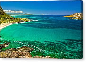 Hawaiian Water Canvas Print by Michael Misciagno