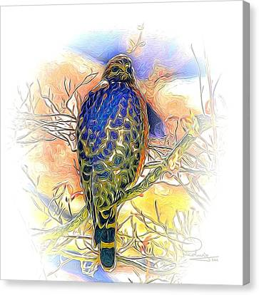 Hawk 2 Canvas Print