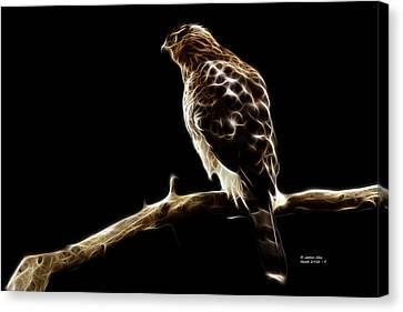 Hawk -  2950 - F Canvas Print by James Ahn