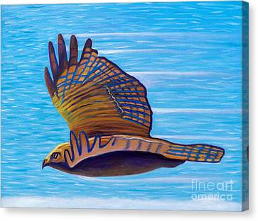 Hawk Speed Canvas Print by Brian  Commerford