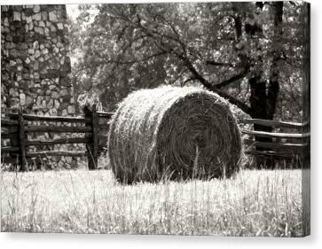 Hay Bale In A Farm Field Canvas Print by Heather Allen