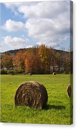 Hay Bale In Country Field Canvas Print
