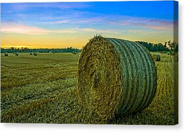 Canvas Print featuring the photograph Hay Bales Before Dusk by Alex Weinstein