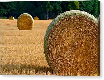 Hay Bales Canvas Print by Chuck De La Rosa