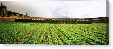 Hay Bales In A Farm Land, Germany Canvas Print by Panoramic Images