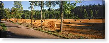 Hay Bales In A Field, Flens, Sweden Canvas Print by Panoramic Images