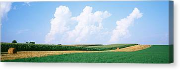 Hay Bales In A Field, Jo Daviess Canvas Print by Panoramic Images