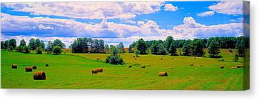 Hay Bales In A Landscape, Michigan, Usa Canvas Print by Panoramic Images