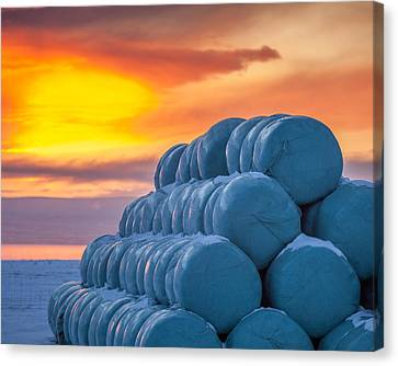 Hay Bales Wrapped In Plastic For Winter Canvas Print by Panoramic Images