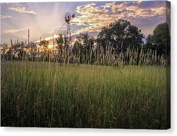 Hay Field Sunset Canvas Print by Bill Wakeley