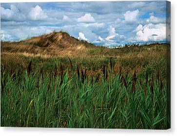 Hay Mound Canvas Print by Mike Feraco