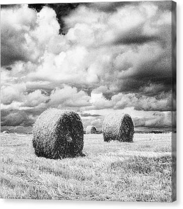 Haybales Uk Canvas Print by Jon Boyes