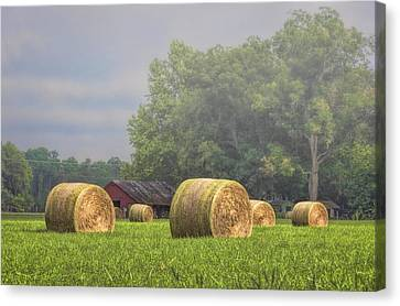Hay's A Waitin' Canvas Print
