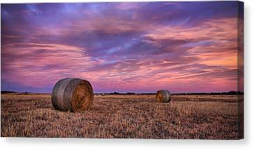Bales Canvas Print - Hayseed by Thomas Zimmerman