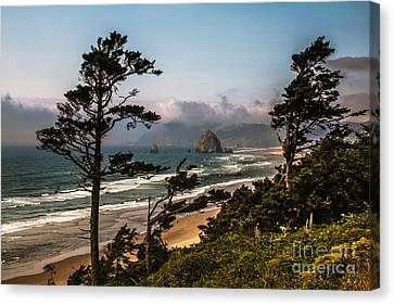 Seacape Canvas Print - Haystack Framed by Robert Bales