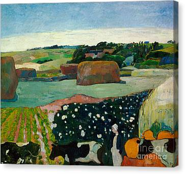 Haystacks In Brittany Canvas Print by Paul Gaugin