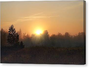 Hazy Sunrise Canvas Print