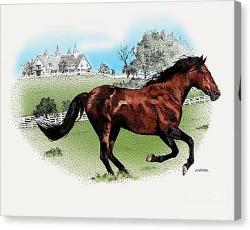 He Is A Winner Canvas Print by Joseph Juvenal