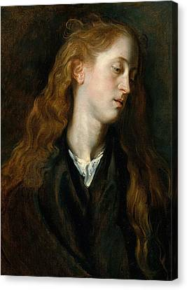 Head Of A Young Woman Canvas Print by Anthony van Dyck