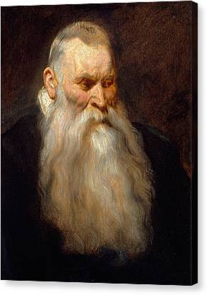 Old Man With Beard Canvas Print - Head Of An Old Man With A White Beard by Anthony van Dyck