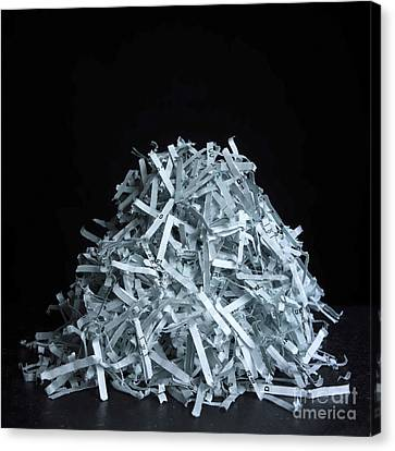 Head Of Shredded Paper Canvas Print by Bernard Jaubert