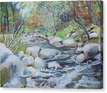 Head Waters On The James River Canvas Print
