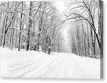 Heading For Davis West Virginia After Snow Storm Canvas Print by Dan Friend