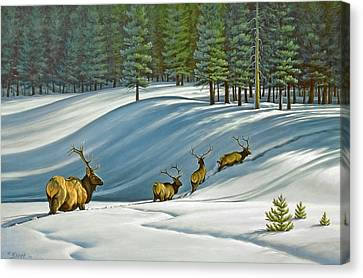 Heading For Timber - Elk Canvas Print by Paul Krapf