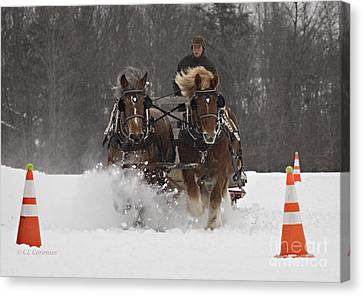 Canvas Print featuring the photograph Heading To The Finish by Carol Lynn Coronios