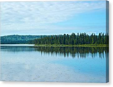 Headquarters Lake In Kenai National Wildlife Refuge In Soldotna-alaska Canvas Print by Ruth Hager