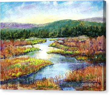 Headwaters Of Blackwater Canvas Print by Bruce Schrader